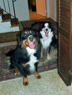 Qwilleran and Sam in the foyer, Sunday 3 February 2002